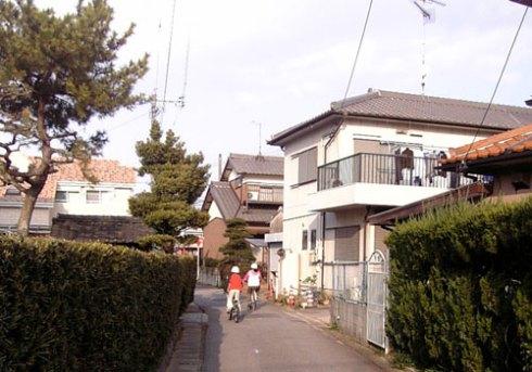 Ruazinhas internas de Yonezu